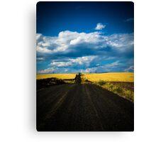 road less taken Canvas Print