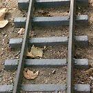 Rail Walk by redrob2000