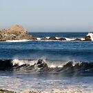 California Waves by MaryLynn