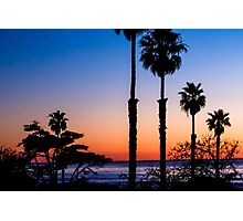 Sunset Silhouette California Photographic Print