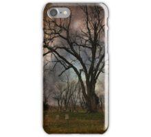 Winter's Last Sigh iPhone Case/Skin