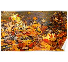 Accumulations of Fall Poster
