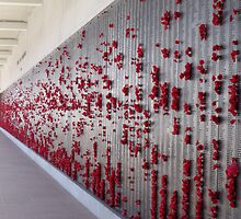Wall of Rememberance Canberra ACT by Judy Woodman