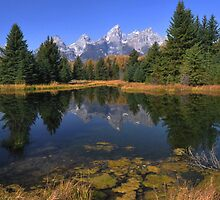 Schwabacher Landing Reflections - The Tetons by Stephen Vecchiotti