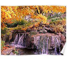Waterfall @ Chicago Botanic Garden Poster