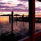 Maryland Sunset by dandefensor