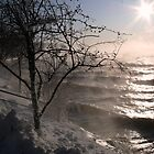 Lake Geneva Winter by dandefensor