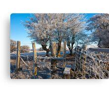 Frozen Fence Canvas Print