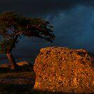 Evening Glow at the Rocks by Brendan J. Robertson
