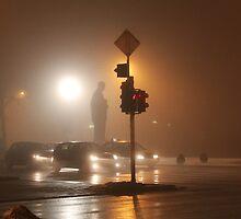 Memories in the Fog by Miodrag Konstantinov