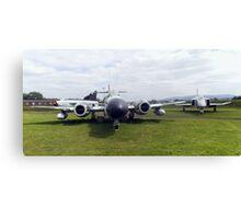 3 planes Canvas Print