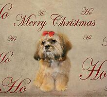 Ho, Ho, Ho..... by Susanne Correa