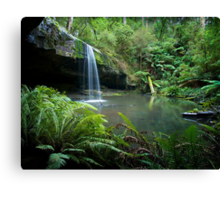 A wet day in the Otways Canvas Print