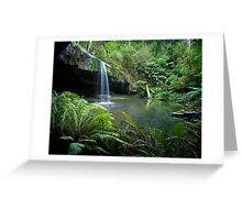 A wet day in the Otways Greeting Card
