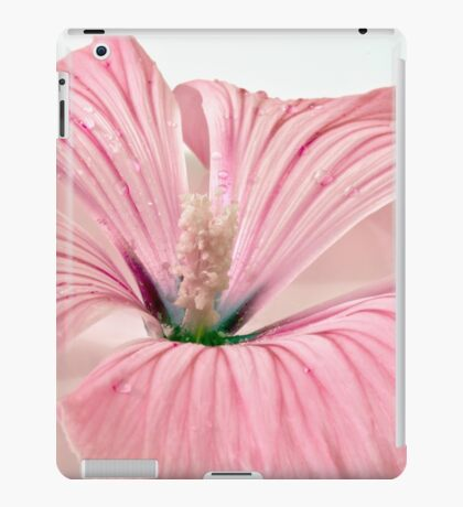 Lavatera Blossom With Rain Drops iPad Case/Skin