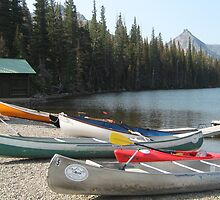 Lakeside Canoes for Hire. by Maureen Dodd
