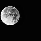 Silvery Moon by Craig Hender