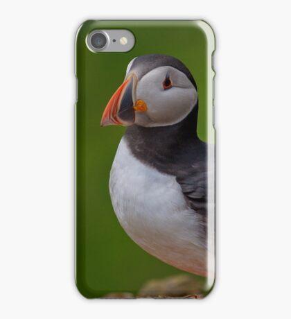 Puffin iPhone Case/Skin