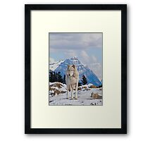 White Grey Wolf & Rocky Mountains Art  Framed Print