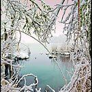 First Snow  by Trevor Murphy