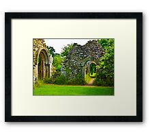 Now Which Way Framed Print