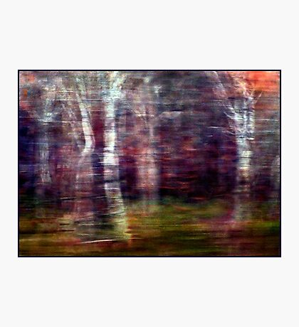 Winter Wind and Woods and Rain Photographic Print