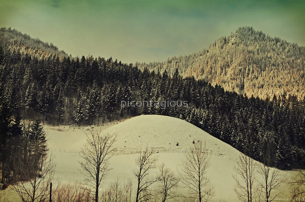Winter Composer 4 by picontagious
