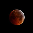 Dark side of the moon by Bree Waltman
