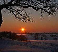 Winter solstice by Trine