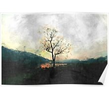 Solitary Tree Overlooking Dovestone Reservoir Poster