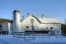 Rural Winter Whites by Gene Walls