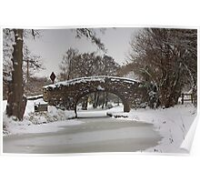 A Frozen Canal. Poster