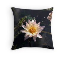 Waterlily - fall series Throw Pillow