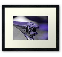 Blue Bear Framed Print