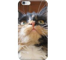 Cats Whiskers iPhone Case/Skin