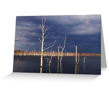 After the storm - Manasquan Reservoir  Greeting Card