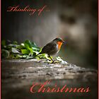 Thinking of Christmas by Ronald cox