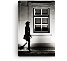 OnePhotoPerDay Series: 355 by L. Canvas Print