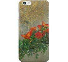 orange diagonal rufous hummingbird iPhone Case/Skin