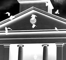 Crows at Colts Neck Reformed Church by apendjurin