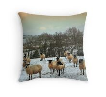 Why you looking at me. Throw Pillow