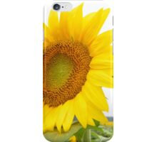 Sunflower Too! iPhone Case/Skin