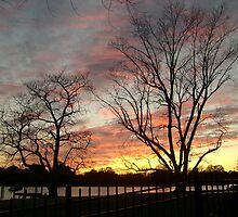 Winter Sunset - Lafayette River by susiqfc