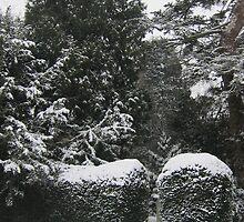 A snow scene by Jeff  Wilson