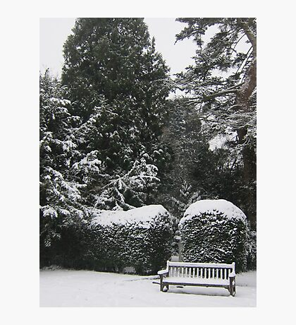 A snow scene Photographic Print