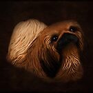 Little Pekingese by Gary Smith