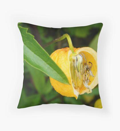 Alnwick Gardens Throw Pillow