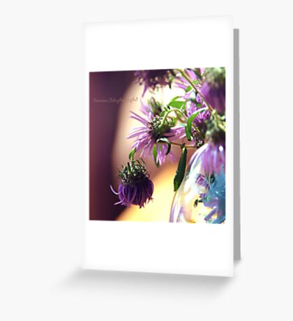 purple corn flowers in a vase Greeting Card