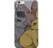 Chief Rabbit and his Guardians iPhone Case/Skin