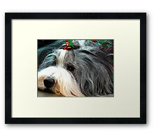 Tis the Season!  Framed Print